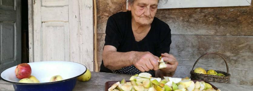 Adaptacja – filmy z Kaukazu